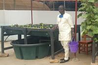 le docteur Ibrahim Toko